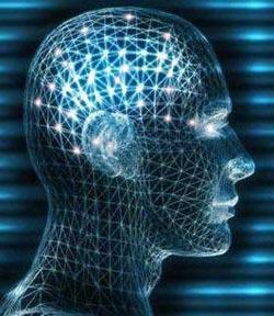 Kafanızın büyüklüğü IQ'nuzu etkiler mi?