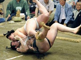Sumo güreşçileri neden bu kadar şişmandır?