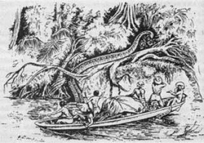 Dev Anakonda / Amazon Nehri