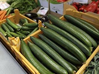 salatalik - Öldüren salatalık alarmı