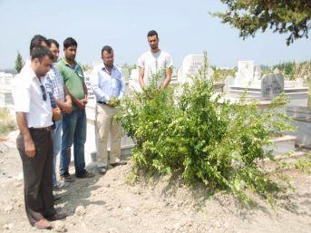 Suudi Arabistan'da ölen gencin cenazesi Hatay'da toprağa verildi